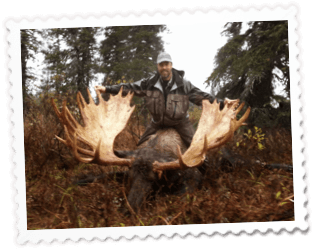 Big Antlers - DIY Moose Hunting