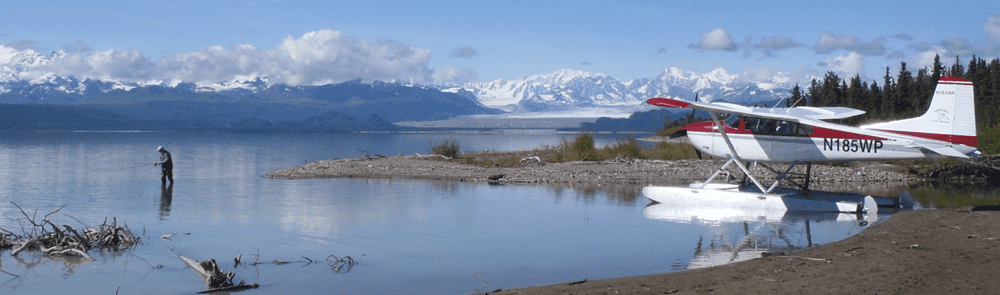 DayTripHeader - Day Trips/Charters - Glacier Tours - Bear Viewing - Anchorage