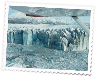 Glacier Viewing Tours