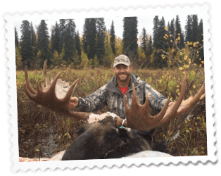 Moose - DIY Moose Hunting