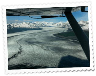 View Out Wing - Day Trips/Charters - Glacier Tours - Bear Viewing - Anchorage